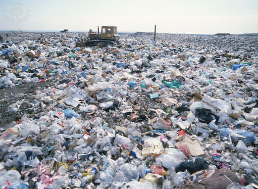 trash a threat to environment Chapter 4 threats to the environment summary by russ long july 25, 2017: i destruction of the natural environment reduces the ability to produce food and it hinders progress in the but economic policies oriented toward rapid growth are a threat to several sectors of the natural.